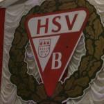 HSV01